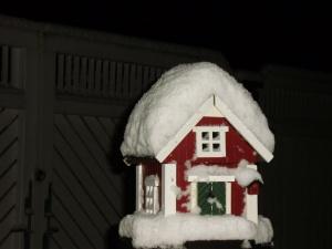 Putnu mājiņa, 2012.13.01