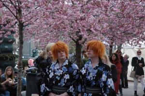 Ziedošie japāņu ķirši un savādās geišas