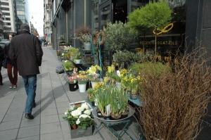 Pavasaris būs! Vakar Stokholmā nekas neliecināja par sniega tuvošanos!
