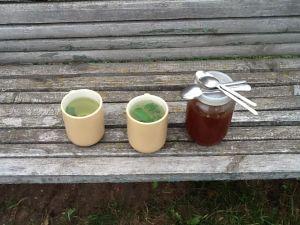 Zvārtavas tēja