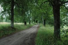 Ceļs uz Tomēniem