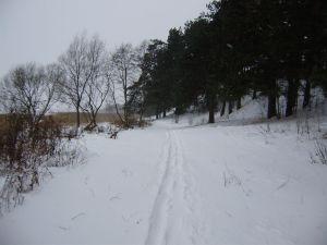 Ziemassvētku taka, 2012. gada 24. decembrī