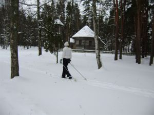 Somijas ziemas kara partizānis slēpo lēni