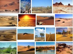Tuksnesis. Attēli no Google