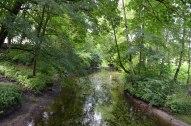 Meditatīvā upīte, Bēnē