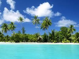 tropiskie augi
