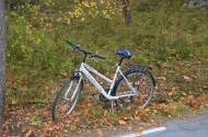 Vientuļš velosipēds