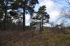Rūnakmens, foto Sandra Veinberga