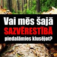 Latvijas atmežošana jeb meža genocīds! Kaimiņu pieredze nav paraugs.