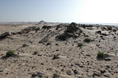 Rietumsahāra 6