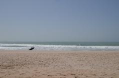 Vindsurfing2, Dakhla