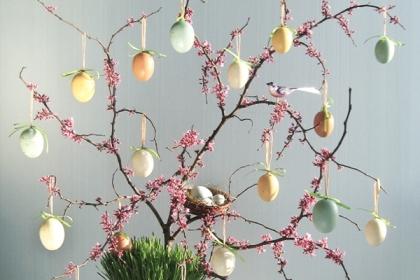 Kā veidot olu koku?
