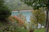 Bosijas rudens kalnos