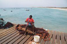 Zivju tīrīšana Kaboverde