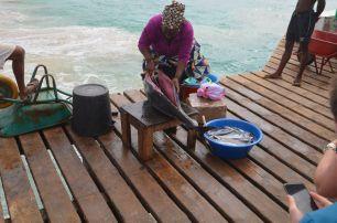 Tunča sagriešana SantaMaria piestātnē
